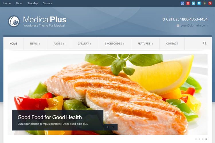 MedicalPlus Health & Medical WordPress Theme