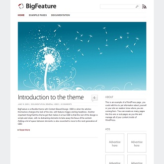 Big Feature WordPress Theme
