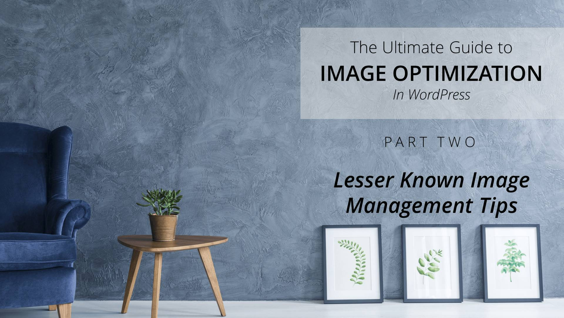 lesser known wordpress image management tips