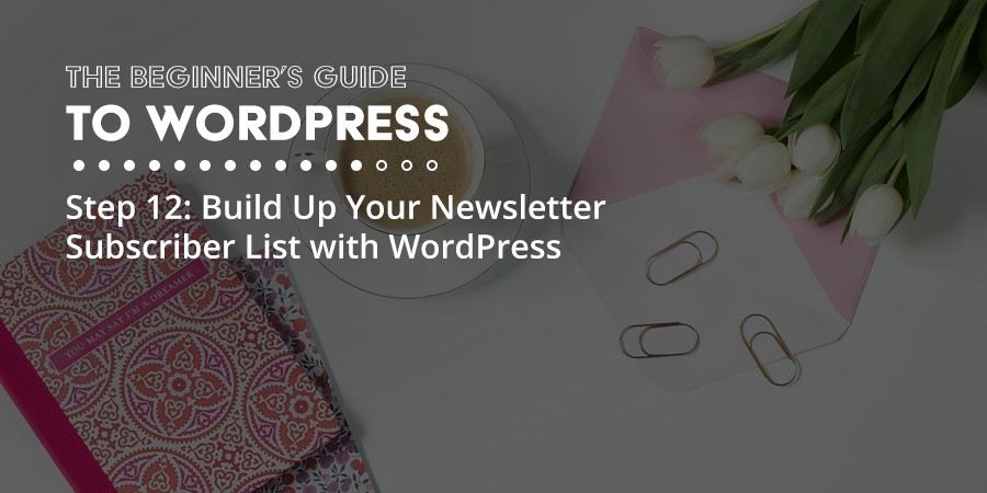 Simple Tools to Build Your Newsletter Subscriber List with WordPress