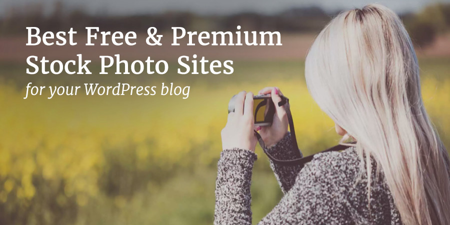 Find the Best Stock Photos for Your WordPress Website