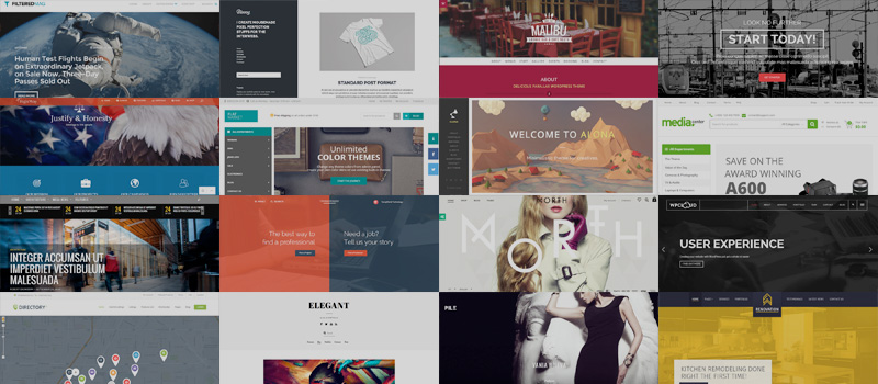 30 Best New Premium WordPress Themes: October 2014
