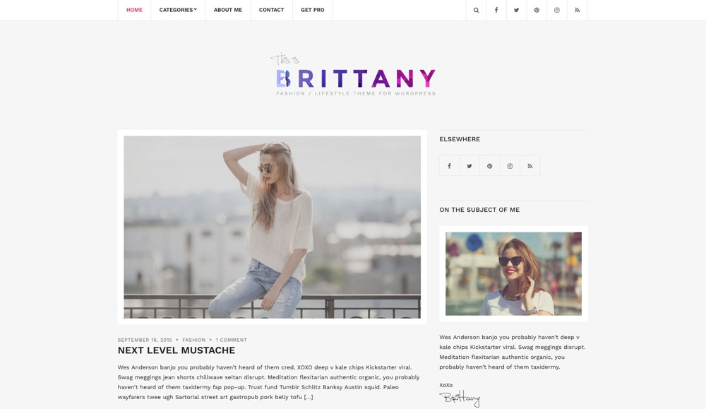 Brittany Light Free Blog WordPress Theme