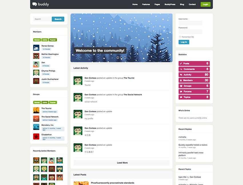 Buddy Multipurpose BuddyPress WordPress Theme