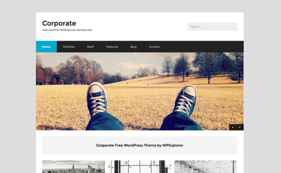 Corporate free business wordpress theme wpexplorer flashek