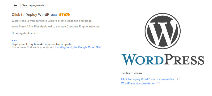 google-cloud-wordpress-013-wordpress setting up