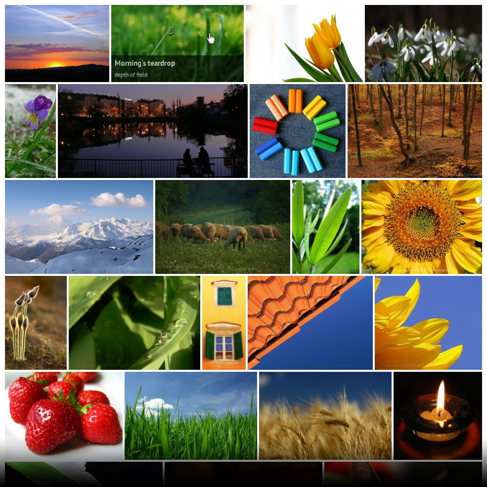 Justified Image Grid Gallery WordPress Plugin