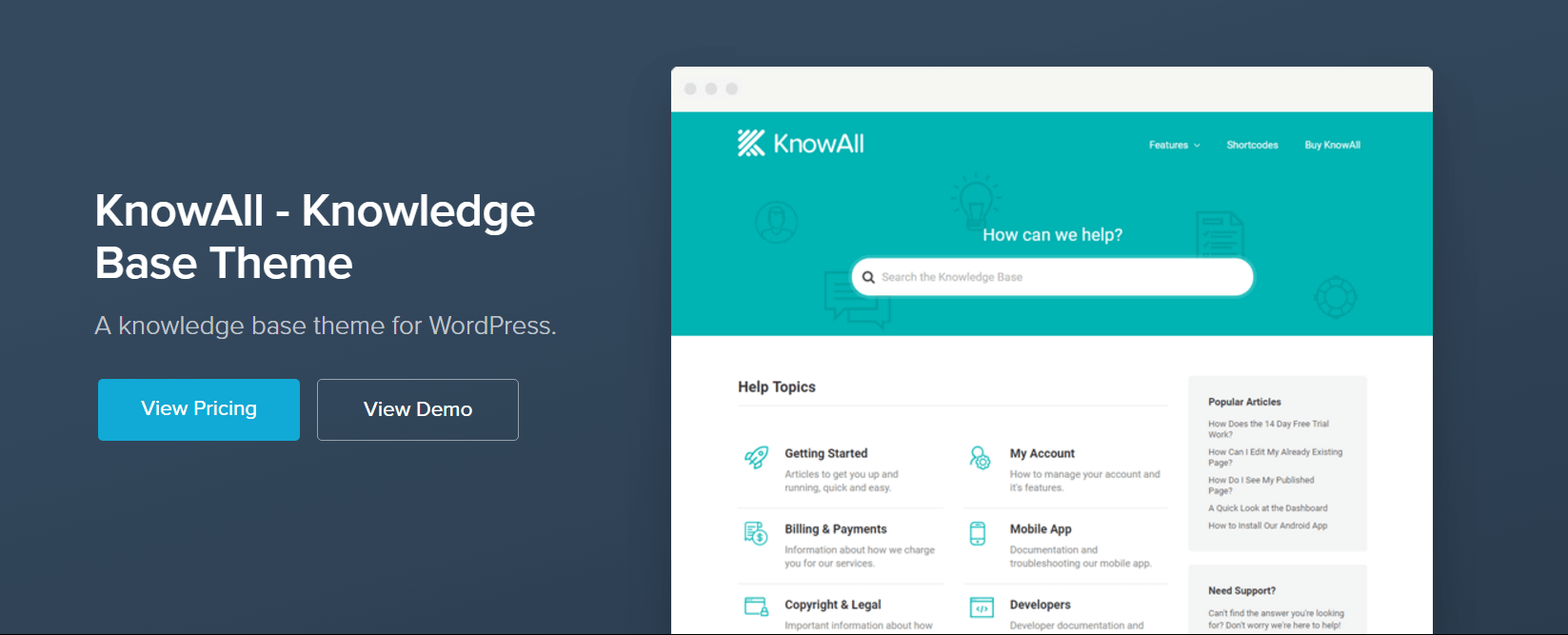 The WordPress KnowAll theme