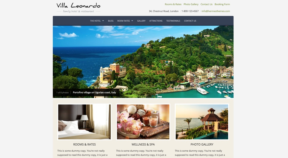 Leonardo WordPress Theme