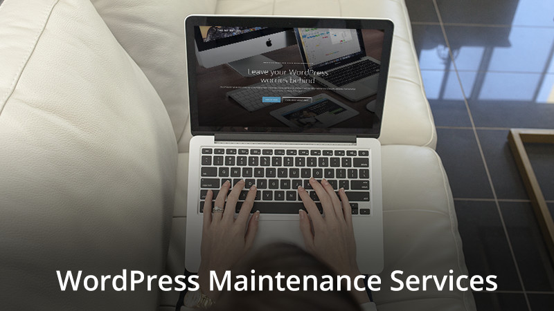Offer WordPress Maintenance