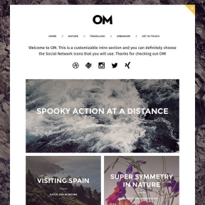 OM Modern Blogging WordPress Theme