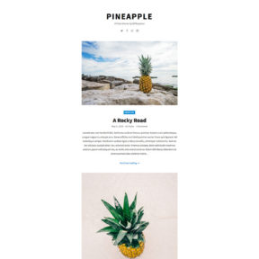 Pineapple Free Photography Blog WordPress Theme
