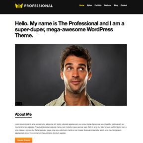 The Professional WordPress Theme by WPExplorer
