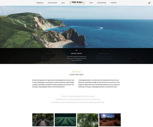 The Wall Minimal Photography WordPress Theme