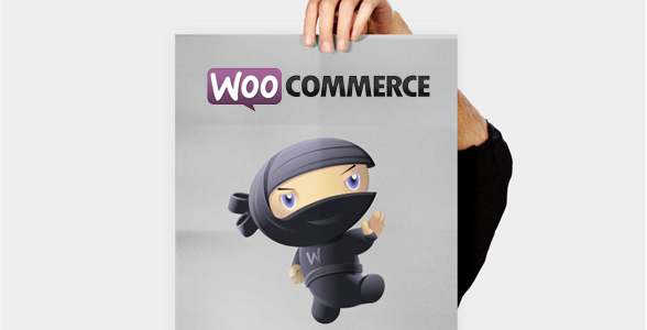 My 25 Best WooCommerce Snippets For WordPress